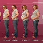 Hamilelikte Doğru Bilgi