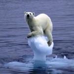 İklim Değişikliğiyle Artan Hastalıklar