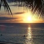 Dominik Cumhuriyetinde Mercanlar