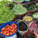 Günlük Sebzeni ve Meyveni Yedin mi?