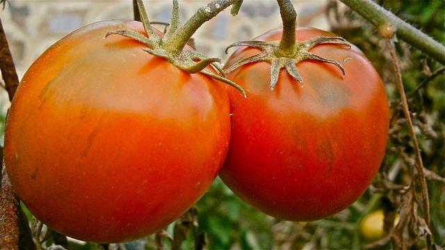 domates depresyonu iyilestirebilir