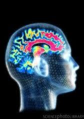 Alışkanlıklarımız ve Hafıza