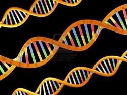 Veri Deposu DNA (dieney)