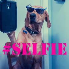 İyi, Güzel, Çirkin, Selfie