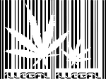 Bonzai denen illegal uyuşturucu madde