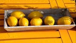 bir kanser savar olarak limon