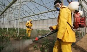 Tarım ilacı, bitki koruma ilacı, pestisit, haşere ilacı, haşere öldürücü