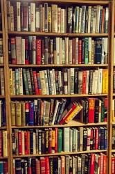 Ne Çok Kitap Var, Ne Yetersiz Zaman