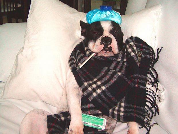 grip belirtileri nelerdir