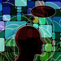 Organize Beyinler