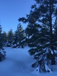 Yoğun Kar Yağışları Bekleniyor