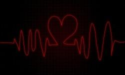 Kalp Krizi Engelleme Timi